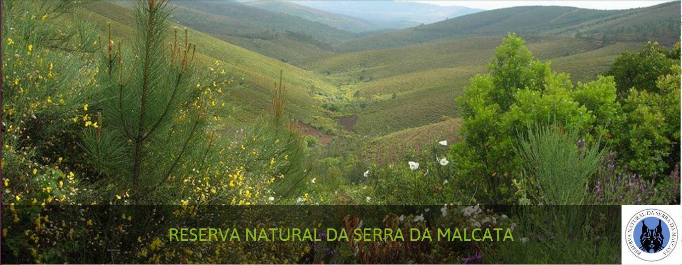 SerraMalcata2